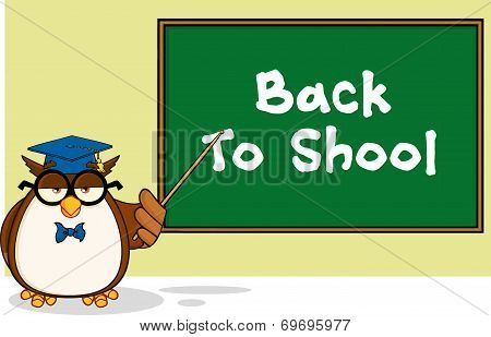 Wise Owl Teacher Cartoon Mascot Character In Front Of School Chalk Board With Text