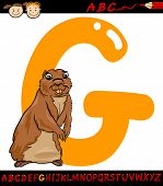 stock photo of gopher  - Cartoon Illustration of Capital Letter G from Alphabet with Gopher Animal for Children Education - JPG