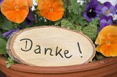 stock photo of viola  - rustic signboard with handwritten thanks and viola flowers - JPG