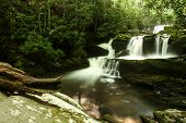 image of smoky mountain  - A waterfall in a forest - JPG