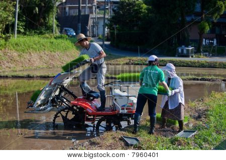 Japanese rice farmer loading his planting machine