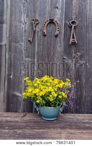 St Johns Wort Medical Flowers In Vase And Antique Horseshoe With Key