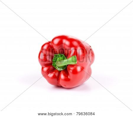 Sweet red pepper.