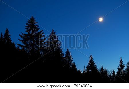 Moon And Star Sky Over Forest Silhouette At Night