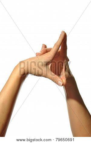 Mudra Hands Poses