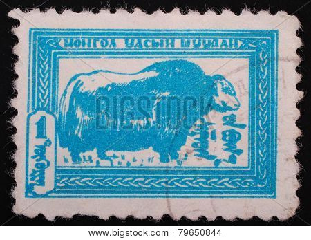 Mongolia Shuudan - Circa 1957 :postage Stamp Printed In Mongolia Slaked Shows Image Of A Buffalo In