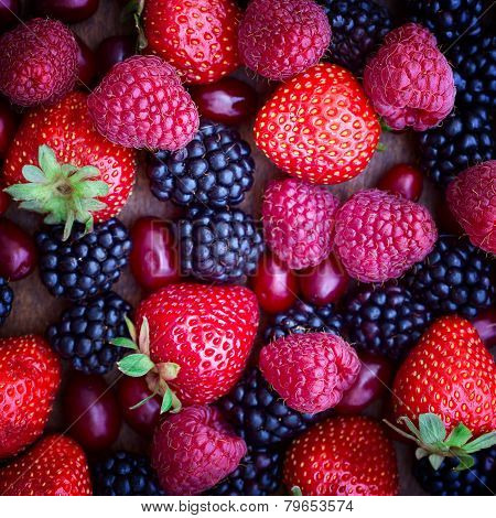 strawberries, dogwood, blackberries and raspberries, top view,
