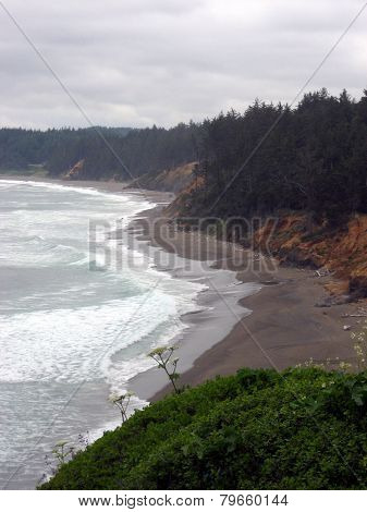 Scene From Oregon Coast With Brown Beach