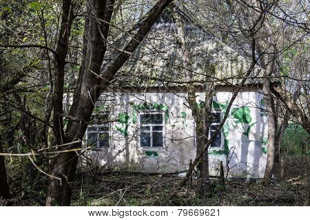 Village In Chernobyl Zone