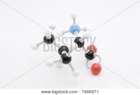 Valine Amino Acid Molecule