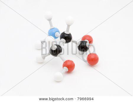Serine Amino Acid Molecule