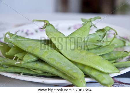 fresh green snow pea (mangetout)