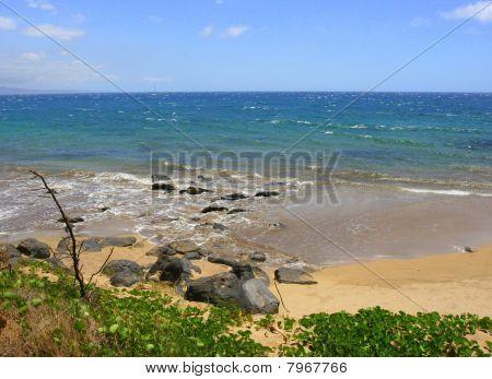 Northshore beach