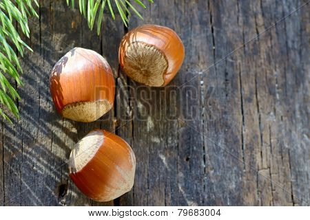 Whole Hazelnuts on old table