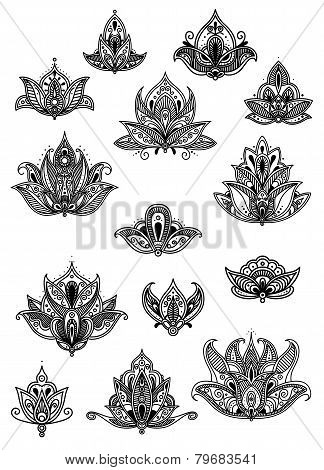 Large set of ornate vintage flower motifs