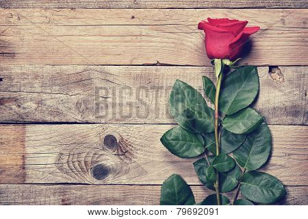 Vintage Rose On Old Wooden Background
