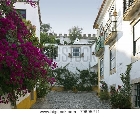 Medieval Town Obidos
