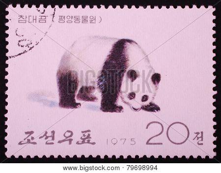 North Korea - 1975: Postal Stamp Printed In North Korea Shows An Image Of An Koala Bear On A White B