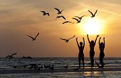 pic of beach party  - Three beautiful young women in bikinis dancing on a beach at sunset surrounded by sea gull birds all in silhouette - JPG