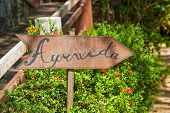 foto of ayurveda  - A sign in the garden of Ayurveda in Sri Lanka - JPG