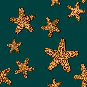 picture of starfish  - Contrast pattern with orange starfishes on a dark green background - JPG