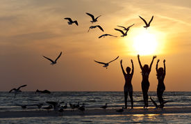 stock photo of beach party  - Three beautiful young women in bikinis dancing on a beach at sunset surrounded by sea gull birds all in silhouette - JPG