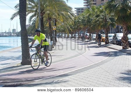 Bicyclists practice along the Paseo Maritimo