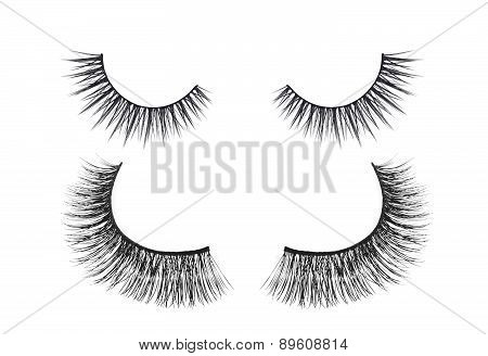 Black False Eyelash Isolated On White Background