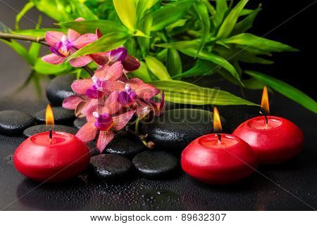 Beautiful Spa Composition Of Twig Red Orchid Flower, Phalaenopsis, Bamboo With Water Dew And Candles