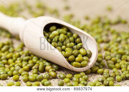 Heap of healthy mung beans vegetarian super foods in wooden spoo