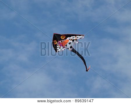Kite Flying , Southern Bohemia