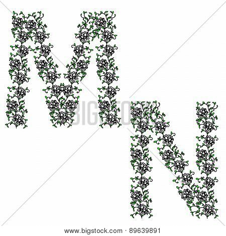Hand drawing ornamental alphabet. Letter MN