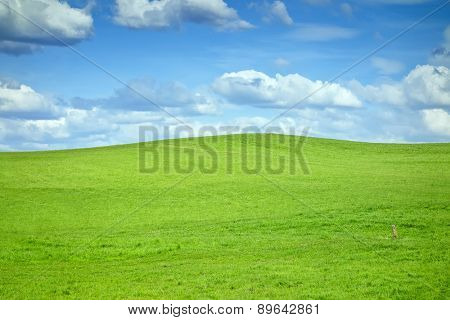 An image of a green hill and some clouds