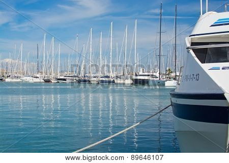 Beautiful yachts in Palma harbor