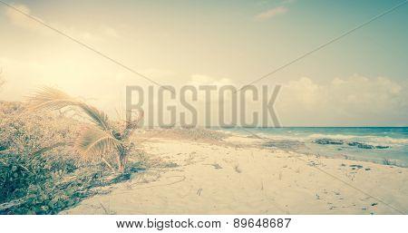Vintage Caribbean Beach