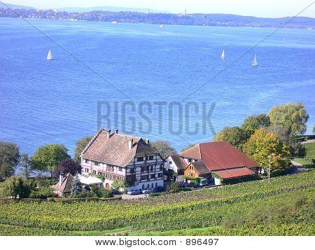 Bodensee Farm