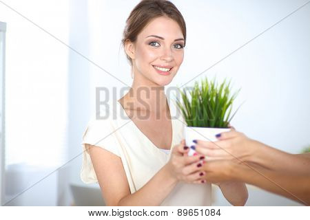 Closeup Of Businesspeople Hand Holding GrassTogether.