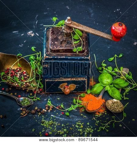 Mill for spices on a dark background