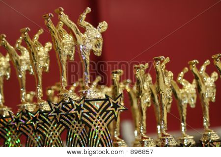 Karate Martial Arts Trophies
