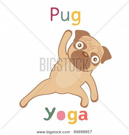 An illustration of pug doing yoga