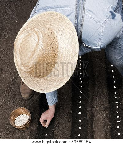 Farmer sowing