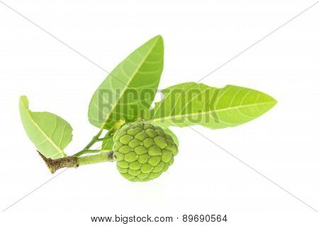 Close Up Green Young Thai Custard Apple With Green Leaf