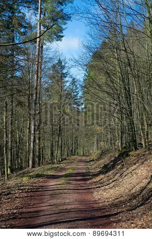 Thuringian Forest, Germany