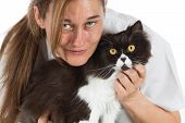 picture of auscultation  - Auscultation beautiful Persian cat veterinary a clinic - JPG