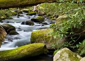 image of gatlinburg  - Silky stream captured in the Smoky Mountains during springtime