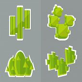 foto of cactus  - Abstract cactus flat style - JPG