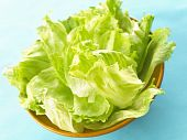 picture of iceberg lettuce  - bowl of fresh iceberg lettuce on dining table - JPG