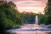 stock photo of fountain grass  - The lake and fountain in St James park - JPG
