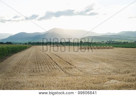 Summer wheat field with haystacks and mountains on the horizon at sunset time after a harvest. Alsas