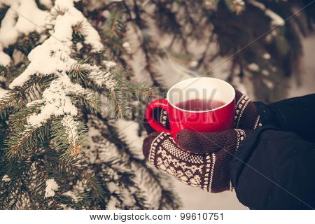 female hands in mittens holding a cup of tea, closeup outdoors